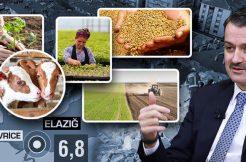 ELAZIĞ VE MALATYA'DAKİ ÜRETİCİLERİN TARIMSAL DESTEKLERİ BUGÜN ÖDENECEK