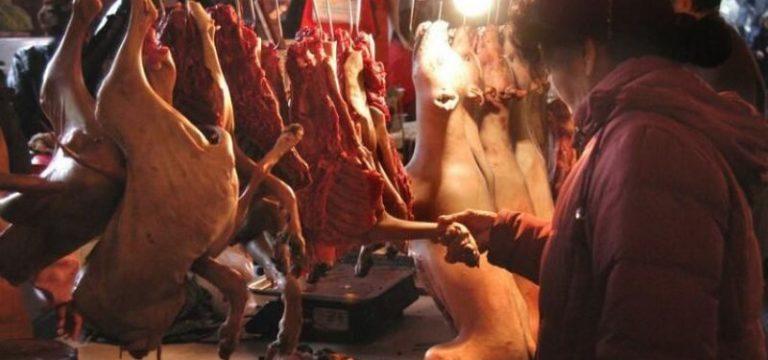 Wuhan'da Vahşi Hayvan Yemek de Yasaklandı