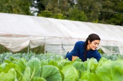 """Pakdemirli: """"Tarım Sektörüyle İlgilenen Gençler İçin Projeler Üretiyoruz"""""""
