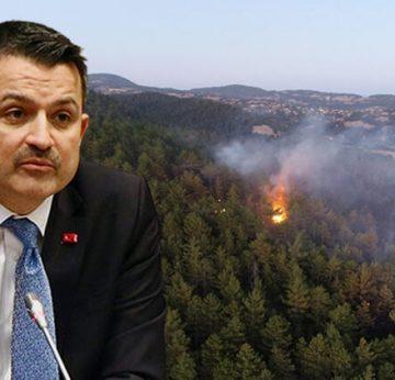 Bakan Pakdemirli'den orman yangınlarıyla ilgili önemli açıklama