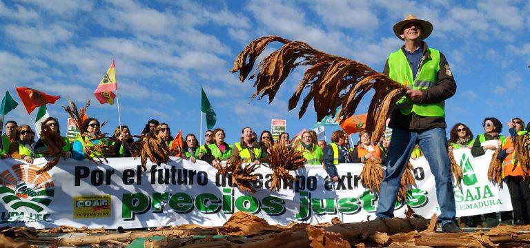 İspanyol Çiftçiler Yüksek Tarımsal Maliyetleri Protesto Etti