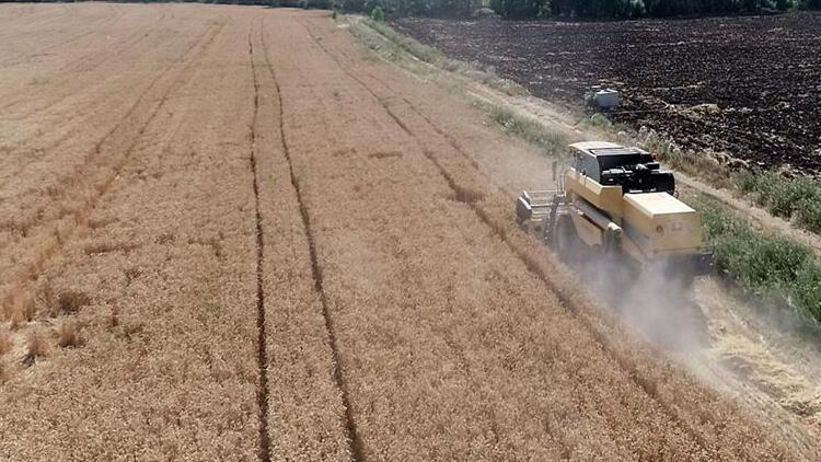 Tohum Desteği Çiftçilerin Yüzünü Güldürüyor