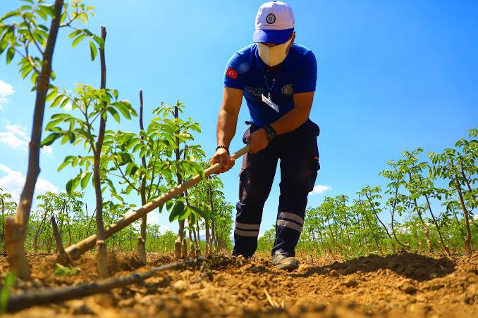 Belediyeden Çiftçilere Destek
