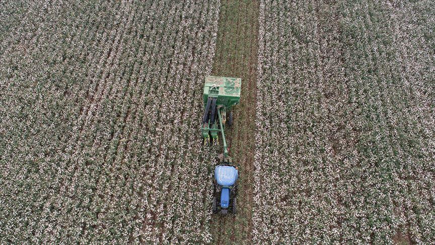 'Multispektral Kameralı İHA'lar' Çiftçilere Büyük Kolaylık Sağlayacak